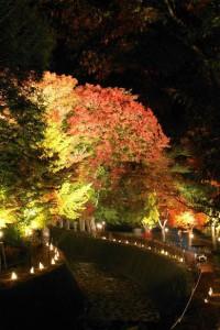 河口湖紅葉祭りライトアップ