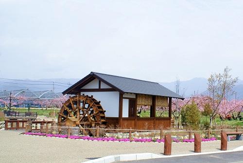 山梨市かのがわ古道水車小屋と桃の花