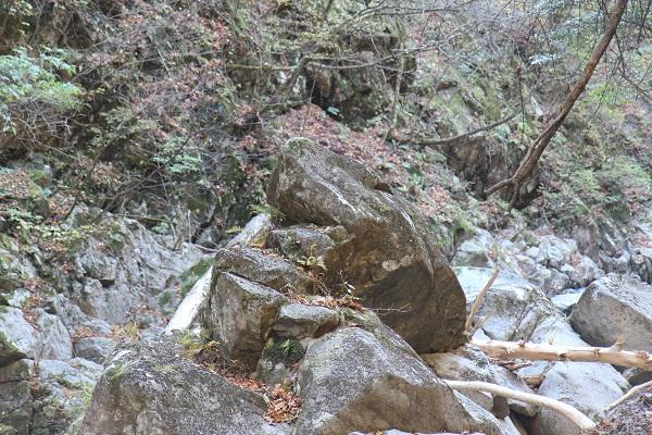 西沢渓谷かえる岩